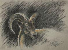 Original painting Ram Aries pastel charcoal Art listed by artist Artettina USA #Realism