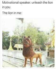 Funny Shit, Really Funny Memes, Crazy Funny Memes, Funny Animal Memes, Stupid Memes, Funny Relatable Memes, Haha Funny, Funny Jokes, Funny Animals
