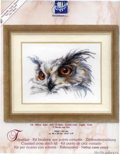 Owl Head 1 of 4