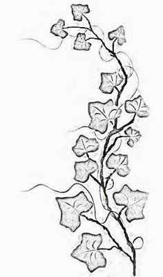 tattoos lower stomach, jasmine tattoo artist, upper arm wrap around tattoos, che… – Constellation Tattoo Ivy Tattoo, Vine Tattoos, Back Tattoo, Leg Tattoos, Tattoo Bird, Tattoo Flowers, Lotus Tattoo, Tatoos, Vine Drawing