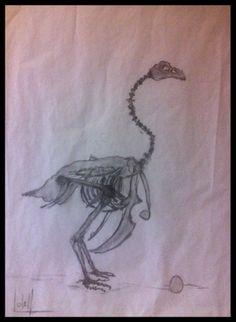 Poule squelette