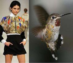 bird inspired dress - Google Search
