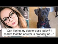 10 Girl Begs Professor To Let Her Bring Dog To Class To Save It From Hu...