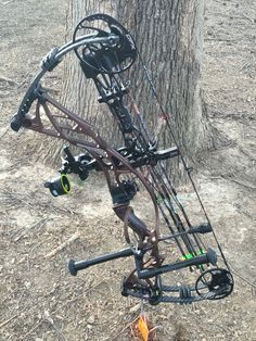 Hoyt defiant 30 Harvest brown and carbon limbs spot Hogg fast Eddie sights