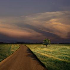 Alone on the Road at Dusk by Carlos Gotay. The long slant of light across the green flat, the solitary tree, and storm sky all create the sense of having fallen out of the quotidian life into another one unimagined until now...