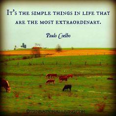 Paul Coelho--Simple things