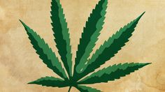 Does medical marijuana work? Consumer Reports unpacks the issues surrounding this question.