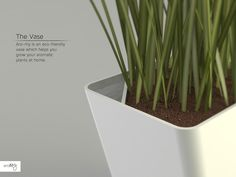 Aro-my: eco-friendly vase which helps you grow your aromatic plants at home.Designed by Matteo Meraldi & Marco Rubini. http://fabme.it/?product=product-6