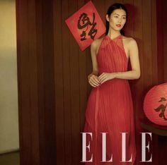 Liu Wen magazine