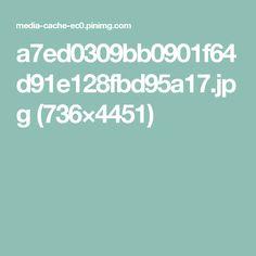 a7ed0309bb0901f64d91e128fbd95a17.jpg (736×4451)