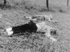 The bodies of prisoners shot in the Wiener Graben quarry at Mauthausen