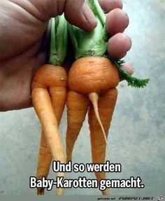 lustiges Bild 'Baby-Karotten.jpg'- Eine von 60633 Dateien in der Kategorie 'Lustiges' auf FUNPOT.