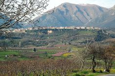 https://flic.kr/p/bZpY1 | Naoussa Backed by Mount Vermion | The town of Naoussa, overlooking a valley of fruit orchards and vineyards.