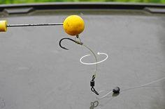 So funktioniert das Hinged Stiff Rig Fishing Life, Carp Fishing, Fishing Hook Knots, Carp Rigs, Pop Up, Fish Hook, Inline, Google, Sports