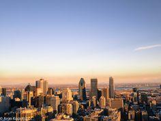 Mount Royal, Montreal, January 2015
