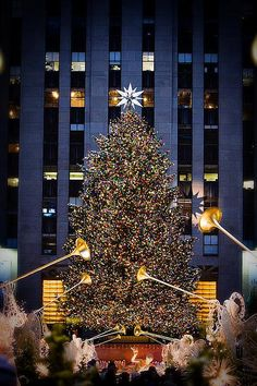 Christmas Tree, Rockefeller Center, NYC Try to go to Manhattan each year to see the tree