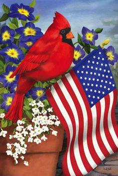 Patriotic cardinal
