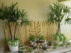 mini jardim de bambu - Pesquisa Google