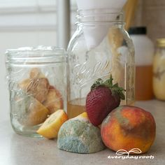 4 Homemade Fruit Fly Traps- to get rid of fruit flies without using chemicals.