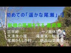 初めての「遥かな尾瀬」 ⑨ 新緑の尾瀬を下る 最終章 三平峠から一ノ瀬休憩所 大清水小屋・尾瀬かもしか村で絶品山菜蕎麦