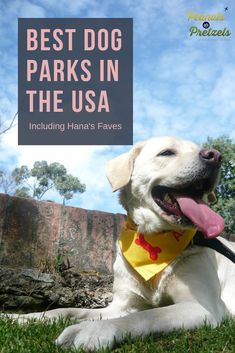 Top Dog Parks in the USA (Including Hana's Faves)! - Peanuts or Pretzels Usa Travel Guide, Travel Advice, Travel Usa, Travel Guides, Budget Travel, Travel Tips, Travel Articles, Dog Travel, Family Travel
