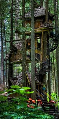 The Enchanted Forest, British Columbia  I want this house so I can feel like an Ewok