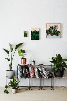 Colorful artprints, cushions and plant pots for a design itnerior