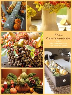 Falling for Fall- Day 2: Fall Centerpieces