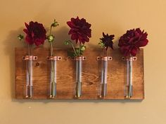 A personal favorite from my Etsy shop https://www.etsy.com/listing/274636782/5-test-tube-hanging-vase-with-gorgeous