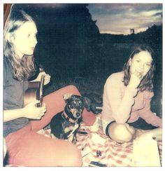 summer night picnic