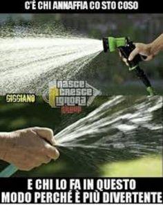 meme italiano animali divertenti che fanno ridere scherzosi da scaricare gratis per whatsapp 75260