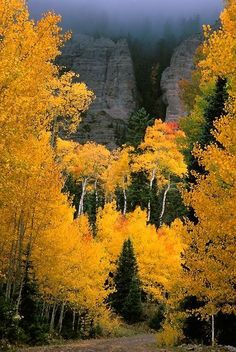 Majestic view & autumn hues..