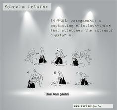 Forearm return (小手返し kotegaeshi) a supinating wristlock-throw that stretches the extensor digitorum. Aikido, Dojo, Stretches, Movie Posters, Movies, Films, Film Poster, Cinema, Movie
