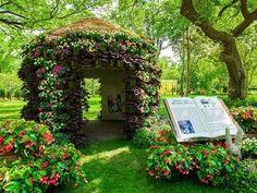 Dallas Arboretum dollar days offer cheap trip down the rabbit hole, August Dollar Days, 2013