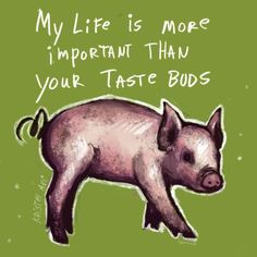 life is more important than my taste buds