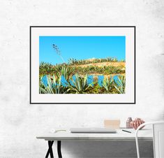 """Cactus  photo, digital prints XXL 19,6""""x12,9"""",instant download, art, wall decor, digital print, office and home. by KrisztinARTDesign on Etsy Name Photo, Digital Prints, Cactus, Wall Decor, Tapestry, Malta, Unique Jewelry, Handmade Gifts, Etsy"""