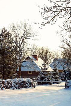 The winter harmony on Saaremaa Island, Estonia