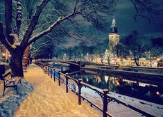 """T.Gonzo on Instagram: """"#beautiful #hometown #turku #finland #åbo #aurajoki #river #winter #december #turuntuomiokirkko #cathedral #christmastree #bench #snow…"""" Turku Finland, Cityscapes, All The Colors, Travelling, Cathedral, Destinations, December, Bench, Snow"""