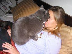 gatos-invadiendo-intimidad-10