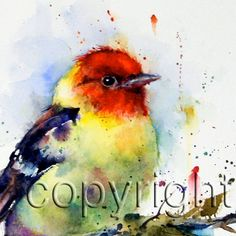 TANAGER Colorful Bird Print by Dean Crouser