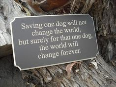 Quotes and sayings - saving one dog. http://www.ilovequotes.org/quotes-and-sayings