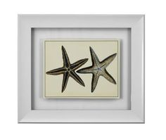 Multi Color Antique Blue Starfish I Wall Art