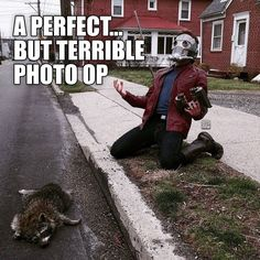 A perfect but terrible photo op | Star-Lord and Raccoon | I\'m going to hell for laughing, but there\'s nothing more we can do for the raccoon.