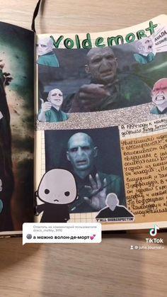 Harry Potter/ Voldemort