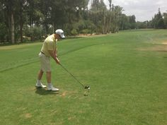 Guests enjoying a round of golf