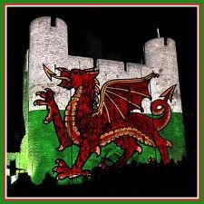 The Welsh flag projected on to the keep of Cardiff Castle - fabulous Cardiff Wales, Cardiff City, Wales Uk, North Wales, Welsh Castles, Castles In Wales, Wales Country, Castle Tattoo, Welsh Weddings