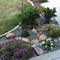 Landscaping with rocks #LandscapingWithRocks
