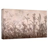 """Found it at Wayfair - """"Wildflowers Brown"""" by Cora Niele Photographic Print on Canvas"""