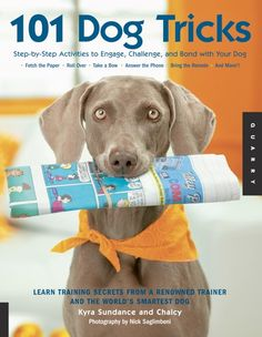 101 Dog Tricks by Kyra Sundance & Chalcy.  Step-by-Step Activities to Engage, Challenge and Bond with your dog.  Fetch the paper, Roll Over, Take a bow, Answer the phone, Bring the remote and more.