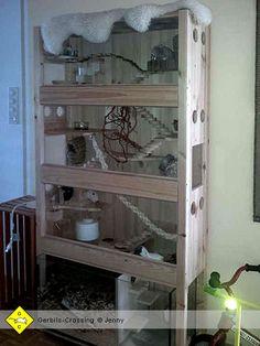 rattenk fig selbst gebaut mission rattenk fig pinterest selbst bauen ratten und k fig. Black Bedroom Furniture Sets. Home Design Ideas